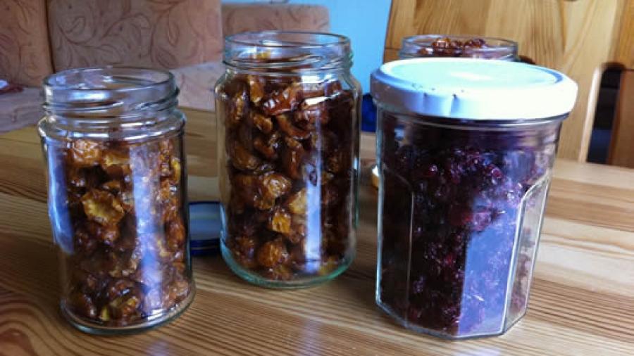 Getrocknete Mirabellen & Johannisbeeren - zum Naschen oder als Zutat für's Müsli