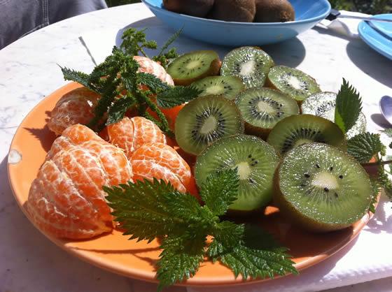 Mandarinen, Kiwis und Brennesseln