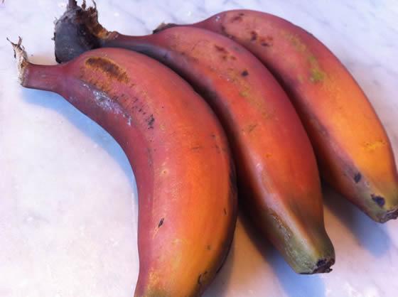Seltener Genuss: rote Bananen. Eine der vielen überaus leckeren Sorten dieser nahrhaften Frucht.