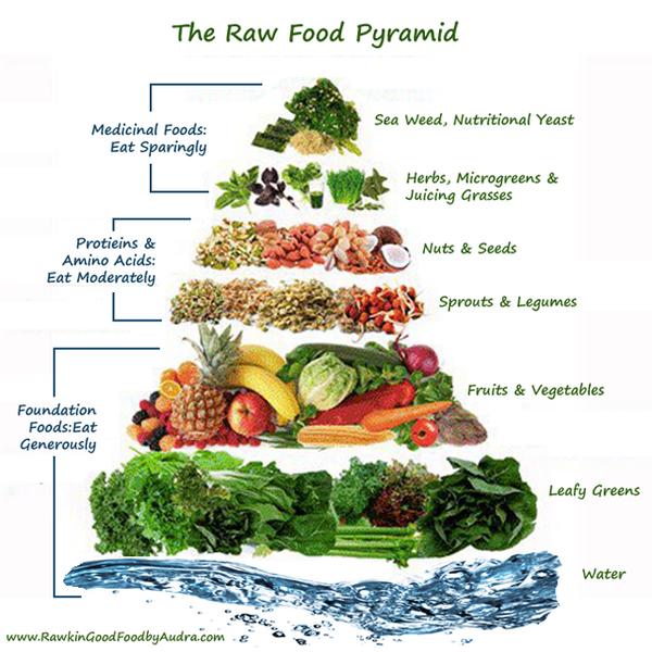 rawfoodpyramide