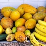 Früchte-Management
