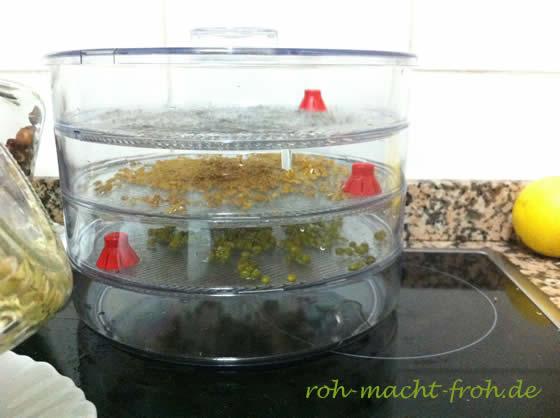 bioSnacky Keimgerät mit 3 Etagen