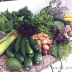 Nahrungsauswahl - Instinkt, Erfahrung, Achtsamkeit
