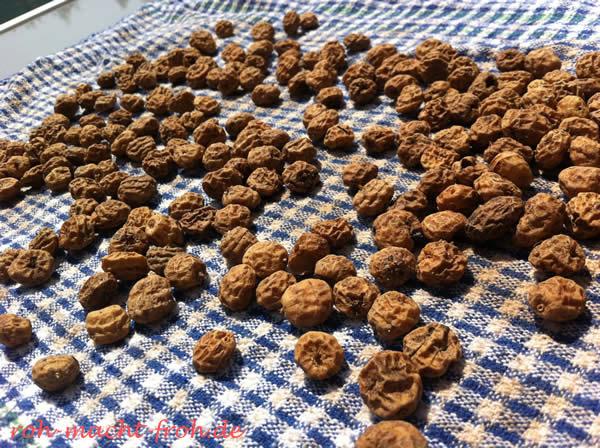 Chufas (Erdmandeln) - nach dem Ankeimen wieder trocknen
