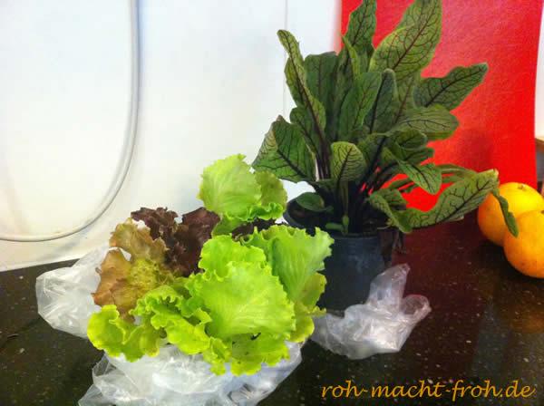 29-salat1