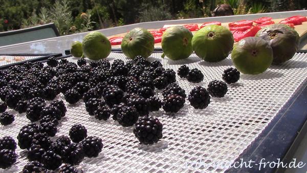 30-sundriedberries