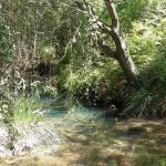 In der portugiesischen Wildnis