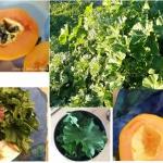 Rohköstlich im kanarischen Winter - Was esse ich an einem Tag?