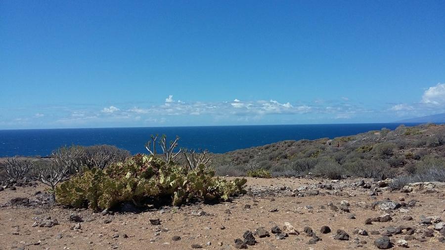 blog-190403-hike1