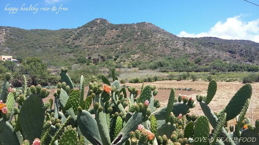 blog-190522-vallearriba1