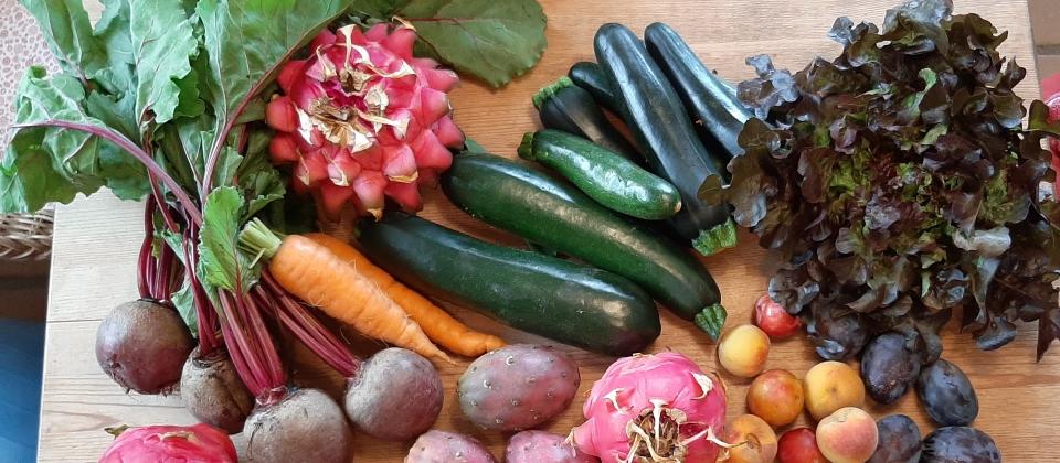 Vegane Rohkost auf Teneriffa, Sommerangebot - Happy Healthy Raw & Free