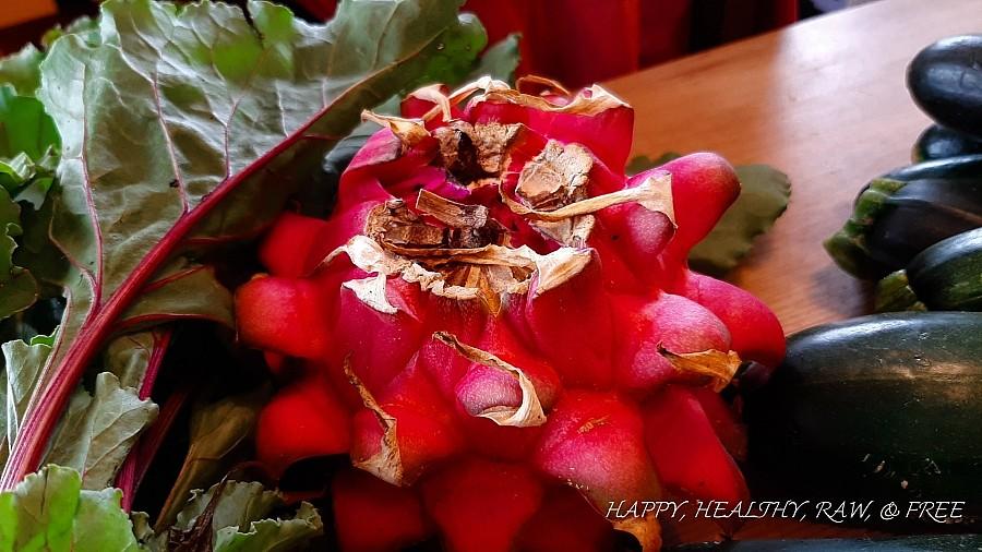 Sommerrohkost Teneriffa: Drachenfrucht