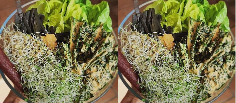 High Green Low Fat Raw Vegan Living Foods Dinner