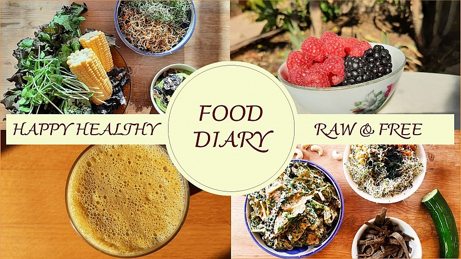 Vegane Rohkost Food Diary Ernährungstagebuch