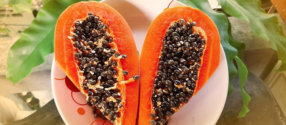 200324-papaya-h