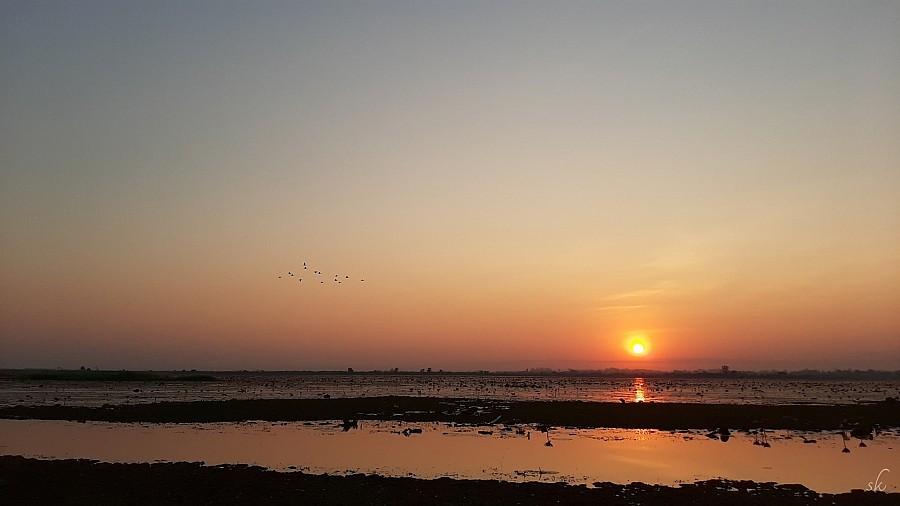 200403-sunrise-lotus-lake